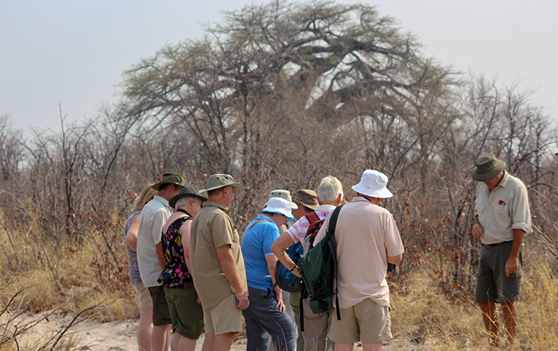Guieded walking tours with Kala Safaris